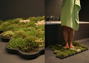 Moss Carpet copia (Custom)