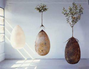 Biodegradable-Burial-Pod-Memory-Forest-Capsula-Mundi